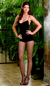 Bodystocking with diamond net stockings.